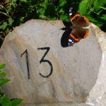 「13」という数字に隠された謎とは?