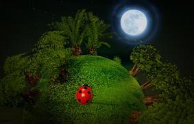 満月と新月のパワーがすごい!願い事を叶える魔法のやり方とは?