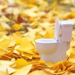 金運アップ!【トイレ】やりがちな風水的失敗アイテムとは?